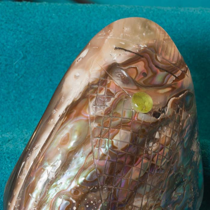 Zuni-Corn-Maiden-Abalone-Shell